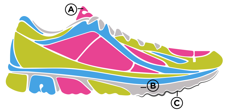 anatomy running shoe